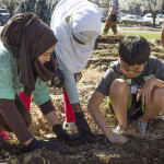 Middle schoolers work together to plant seeds.