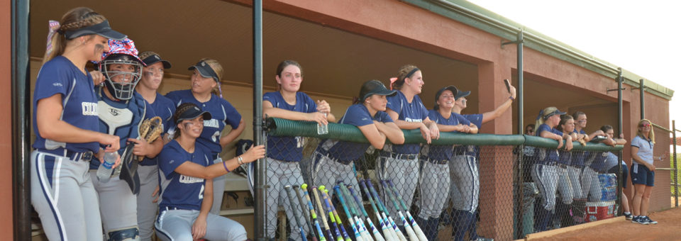 Cougar softball enjoys record-breaking season