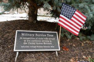 Military Service Tree flag