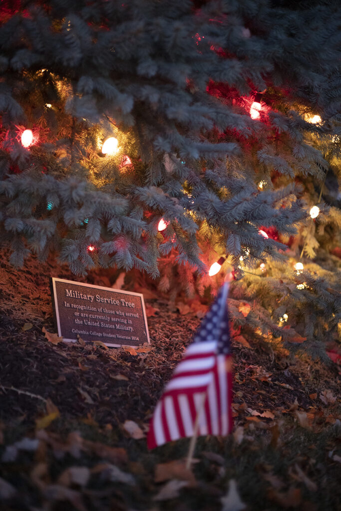 Photo of bottom of lit military service tree, with American flag in foreground