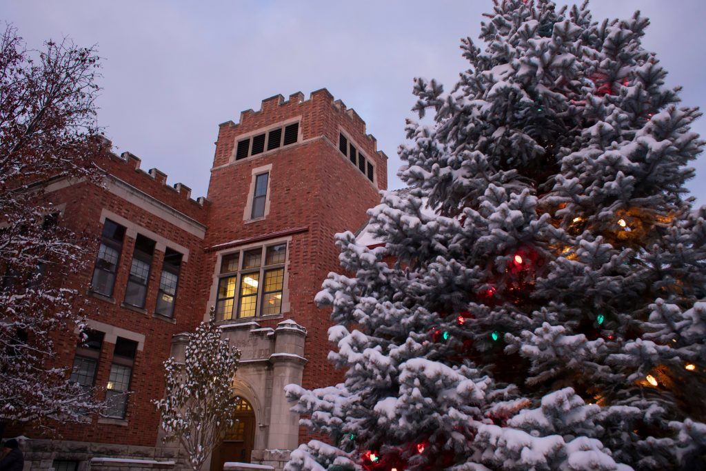 Lit pine tree in the foreground with Dorsey Hall in the background under a cloudy sky. Snow has fallen recently.